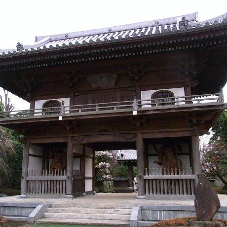 Kodaira City - Temples & Shrines