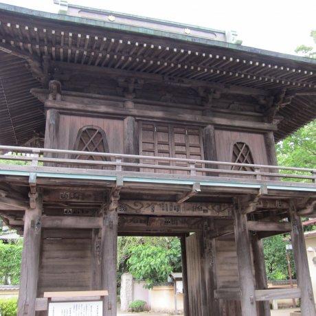 Kokubunji City - Temples & Shrines
