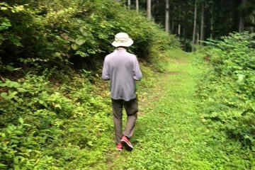 Hiromitsu Seki from the MCT team hiking deeper into the forest