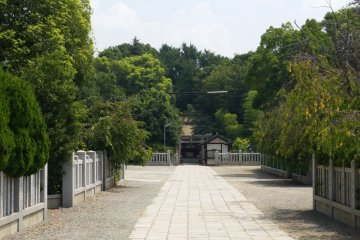 Looking down the avenue to Otori Mihahi Shrine