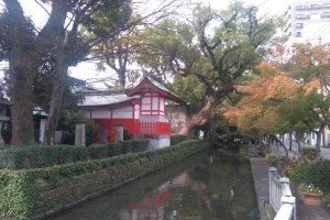 Saga Shrine moat