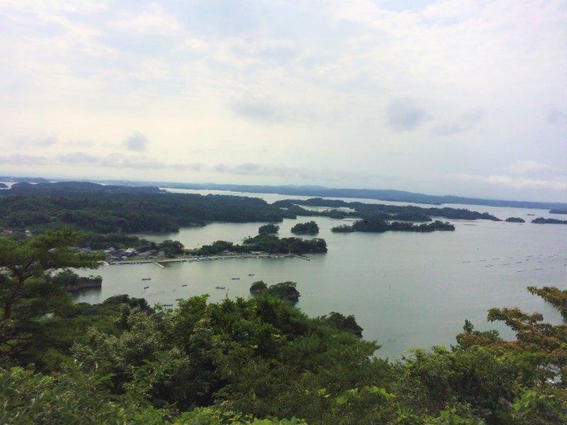 The view from Mt.Otakamori