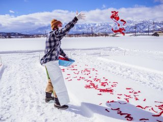 Visitors can also take part in spreading the chillies on the snow.