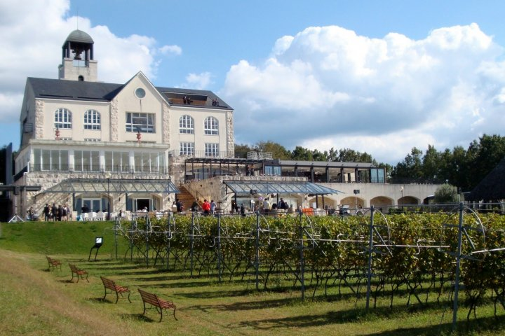 Naka Izu Winery Chateau T.S.