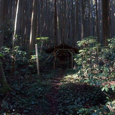 Katsuragi 28 Shuku Kyozuka Trail