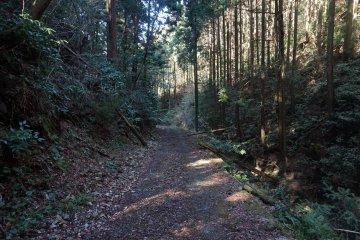 An isolated farm road on the way to Kyozuka 18