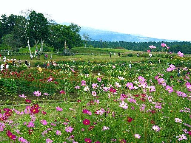 The naturally beautiful Kurohime Plateau