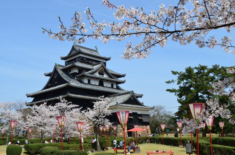 A castle and sakura makes for a truly Japanese springtime scene
