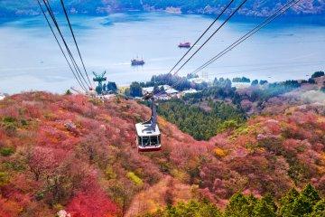 The Hakone Free Pass Guide