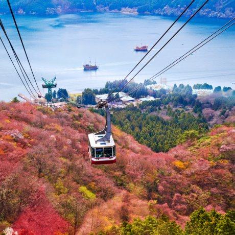The Hakone Free Pass Guide