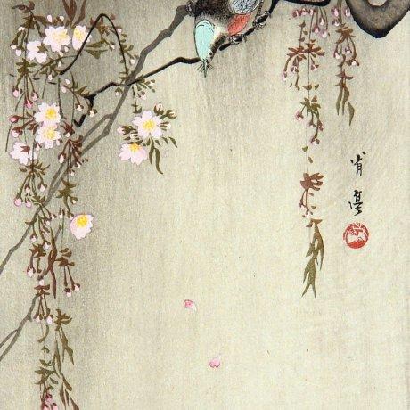 Watanabe Shotei Exhibition