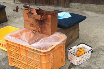 """This is a persimmon peeling 'work station""""."""