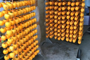 Before hanging them up outside, the peeled persimmon are put on skewers.