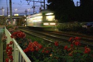 Toden Arakawa Tram Line