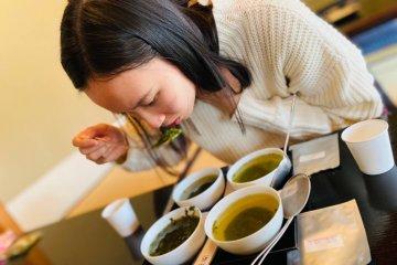 Tasting of the teas