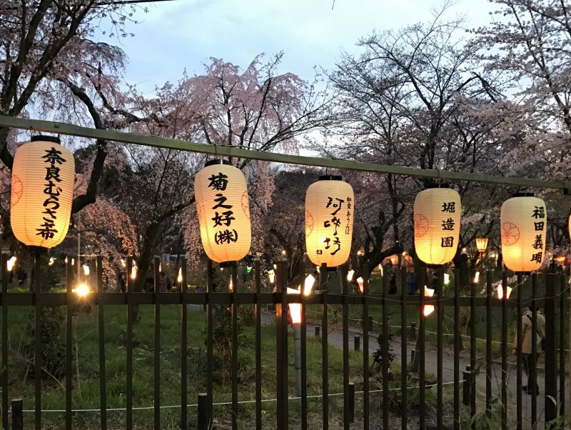 There are many lanterns all around the shrine precincts.