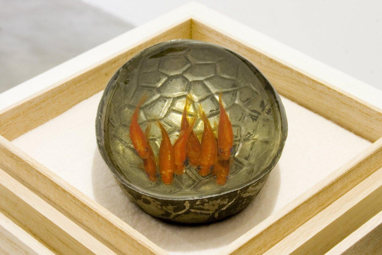An example of Riusuke Fukahori\'s work