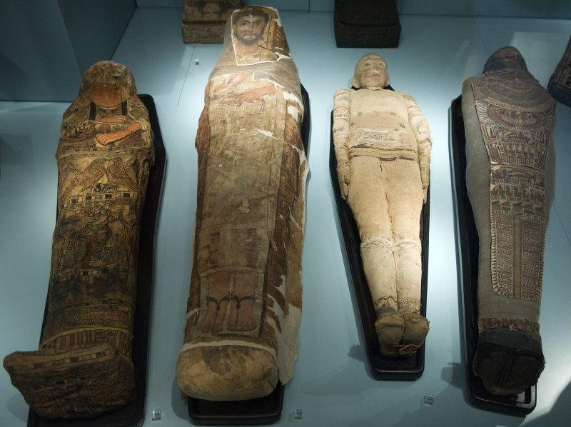 The event will explore mummies from different cultures, and why they were important