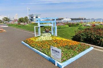 View of Osanbashi pier from Yamashita Park