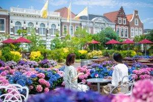 Beautiful hydrangeas in a European-styled setting