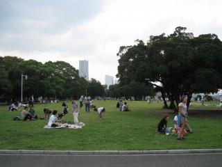 草地上的人们