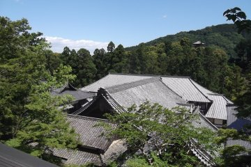 Temple rooftops from above
