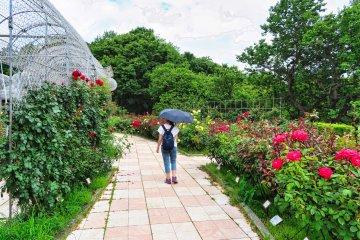 Odawara Flower Garden Rose Garden