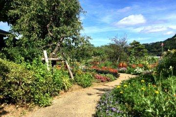 Stroll the garden along the river