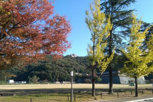 Colour palette of Shiroyama Park
