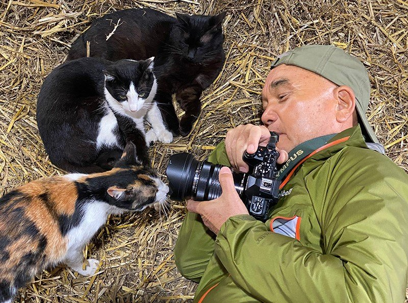Mitsuaki Iwago is famous for his wildlife shots, particularly felines