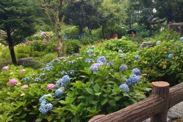 多摩川台公园