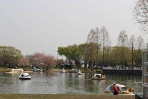 Boat lake at Kawagoe Park