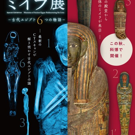 Six Stories of Ancient Egypt