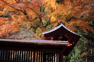 Myougi Jinja Shrine