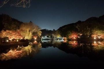 Yakushiike Park Autumn Leaves Festival