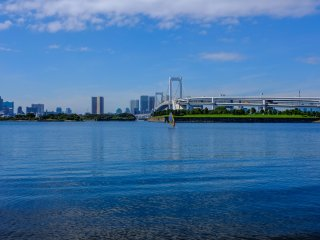 Try windsurfing on Tokyo Bay