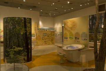 The interactive area for children is a nice ending to the museum