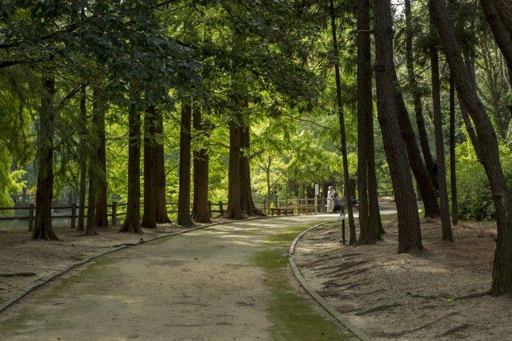 Nagai Botanical Gardens