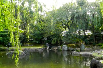 Tree-ringed lake in the garden.