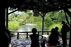 Mukojima Hyakka-en Gardens