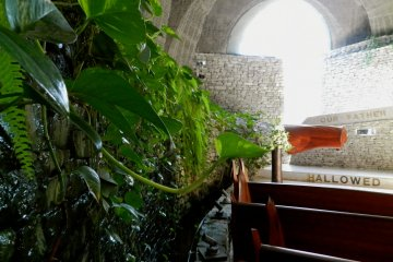 All the elements of the natural world co-exist in the beautiful stone church.
