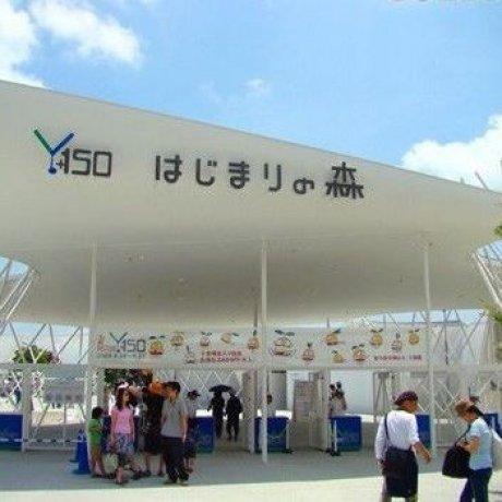 横滨MM21新港区