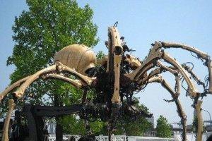大蜘蛛la machine
