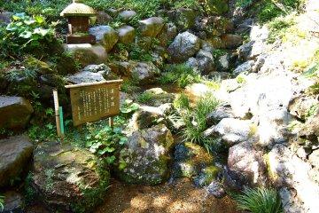 A small natural spring near the Momoji Tei.
