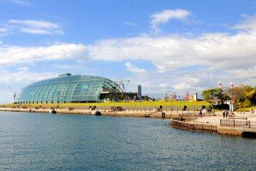 View of Fukushima Aquamarine aquarium, across from La La Mew