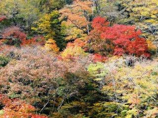 Các vạt núi gần thác Umenoki Todoro