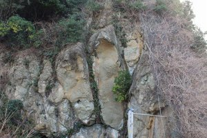 海に突き出すような岩崖に「神の足跡」岩がある