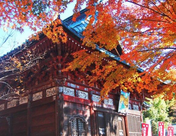 Musim Gugur di Kuil Shimabuji