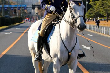 Imperial Palace Guard on horseback