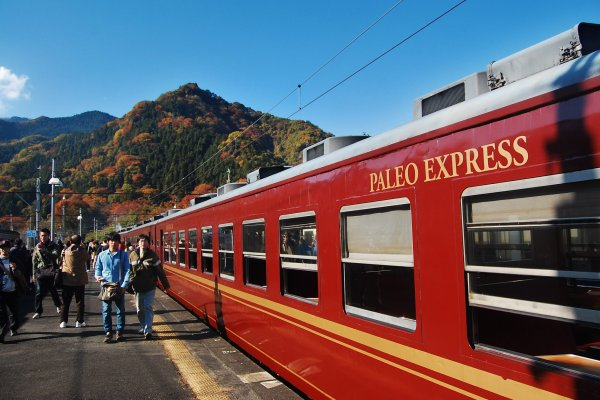 Journey Through Time: Paleo Express - Saitama - Japan Travel